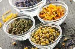 Растительные уросептики: в чем преимущество?