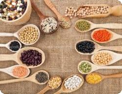 Препараты растительные снижение холестерина в крови